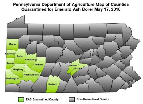 Emerald_ash_borer_sites_in_pa